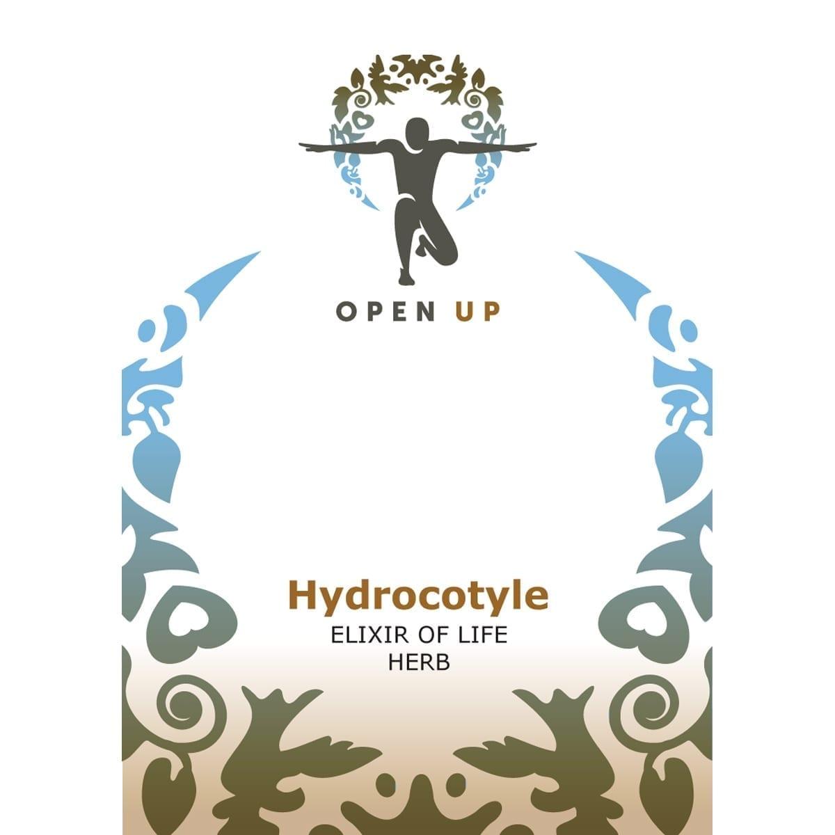 Hydrocotyle