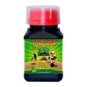 top-crop-green-explosion