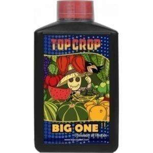 top-crop-big-one