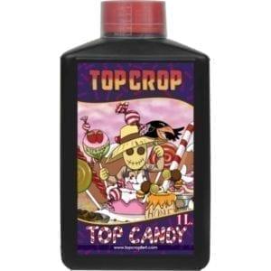 top-crop-top-candy