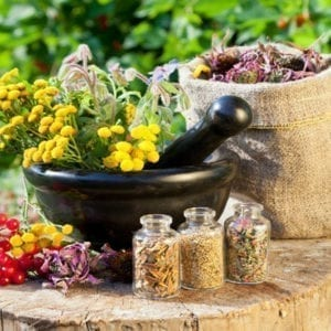 Energetic herbs and plants